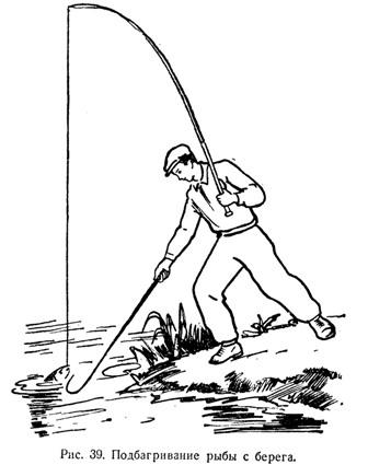 багор для ловли рыбы